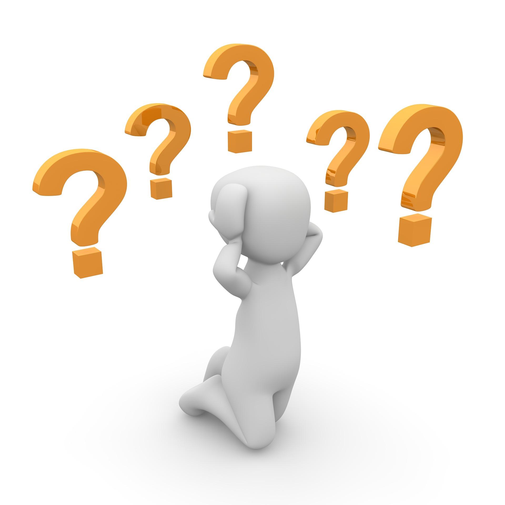 Du hast Fragen zum HOLI-Festival?